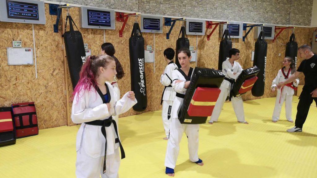 Taekwondo racing team training on MFS shields