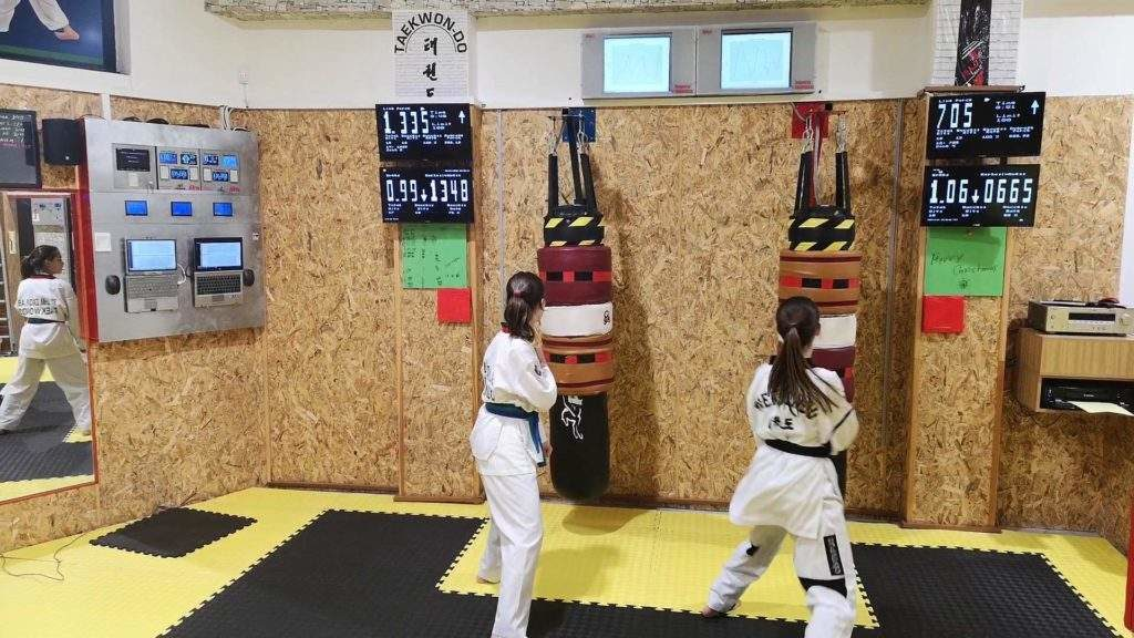 Taekwondo ergometry using MFS system