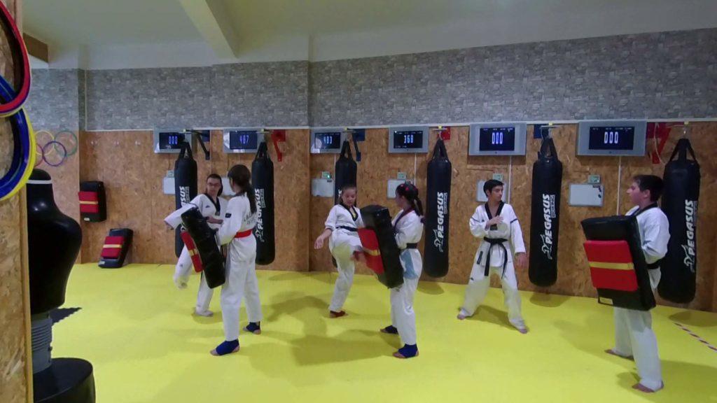 Taekwondo teens training using MFS electronic system