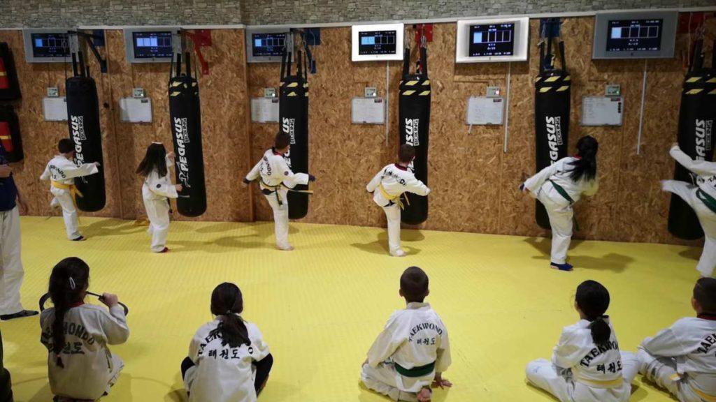 Taekwondo kids chambionship using MFS bags