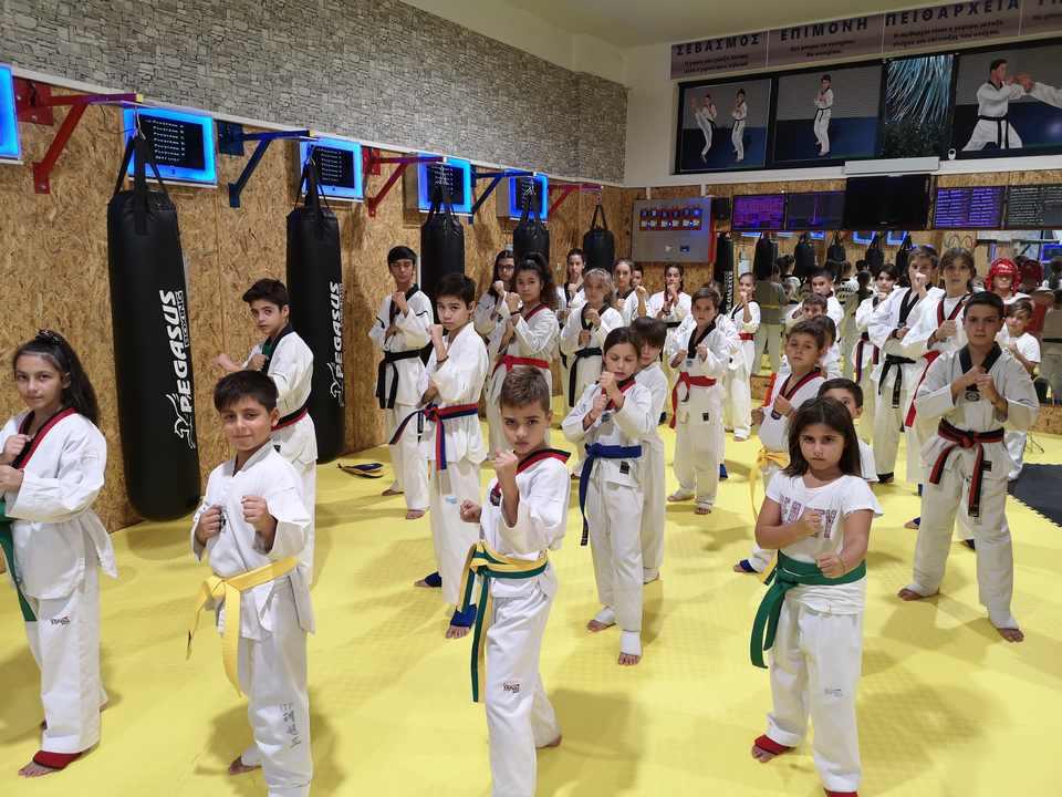 kids start taekwondo
